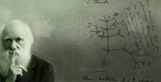Charles_Darwin15