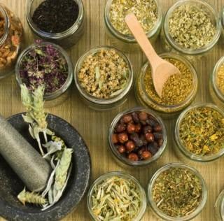 Bitkisel tedaviler nasıl işe yarar?